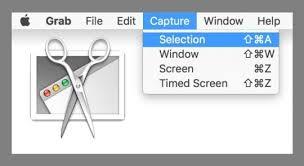 使用屏幕捕獲工具複製圖像